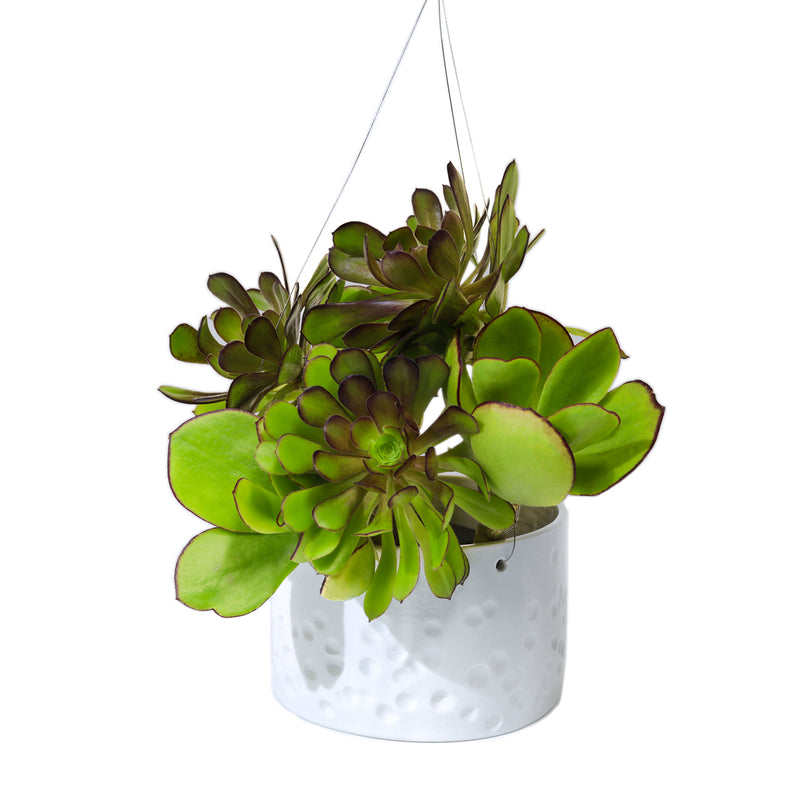 Hanging white porcelain planter size large 15.5cm dia dimples design handmade