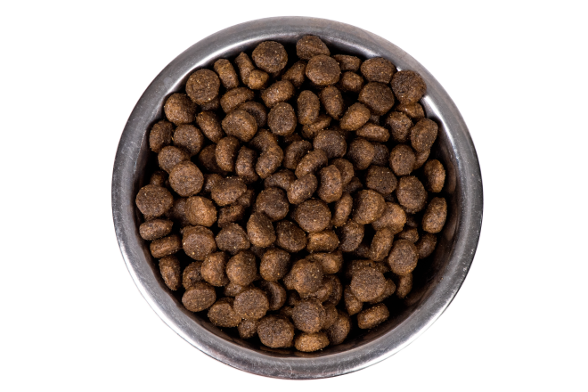 picture of bowl of kibble