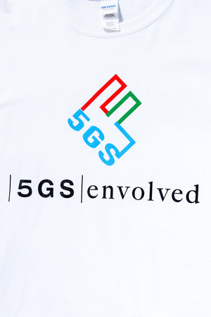 5GS  Accounting Fraud Sweat