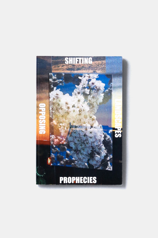 SHIFTING LANDSCAPES OPPOSING PROPHECIES / Peter Sutherland