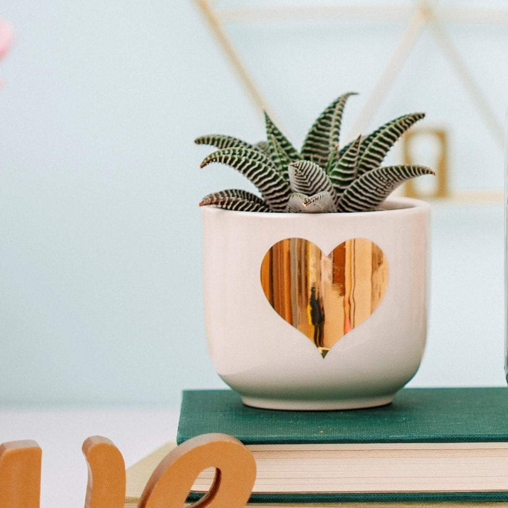 Mini Gold Heart Planter | Valentines Day Gift (no plants included)
