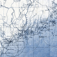 Blue Maine map shower curtain detail