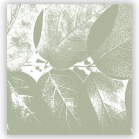 Honeysuckle leaf photograph shower curtain print