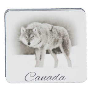 COASTERS- CANADA ANIMAL COASTERS SET OF 6