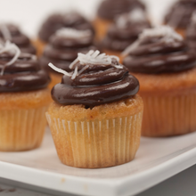 Load image into Gallery viewer, Mini Cupcakes of August