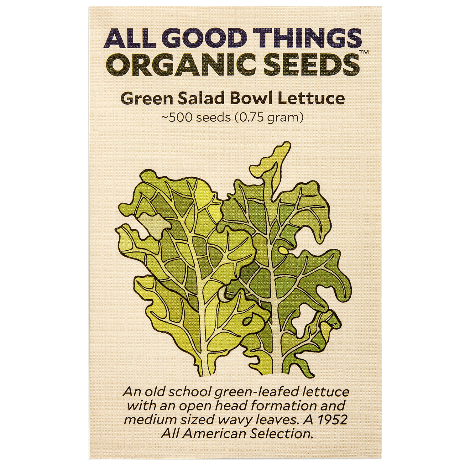 Green Salad Bowl Lettuce