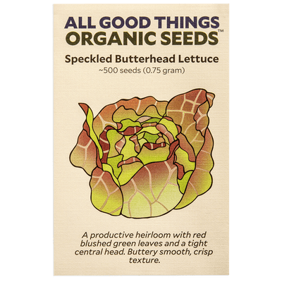 Speckled Butterhead Lettuce
