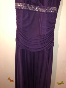 Purple Dress NWT