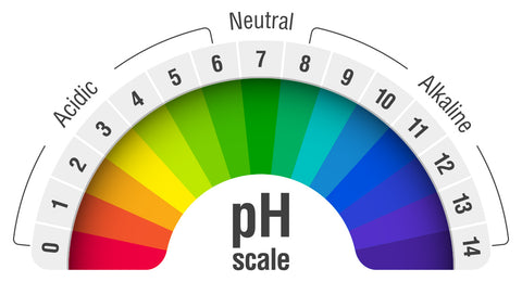 Ph Scale Indicater