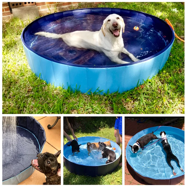 PORTABLE PAW POOL - Paws and Me