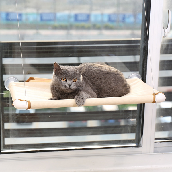 Cat Window Bed To Ease Your Cat's Anxiety - Paws and Me