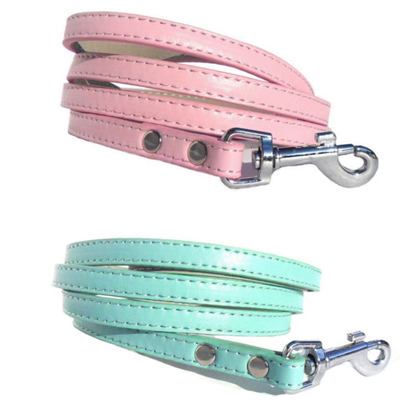 Classic Dog Leads - Blue, Small