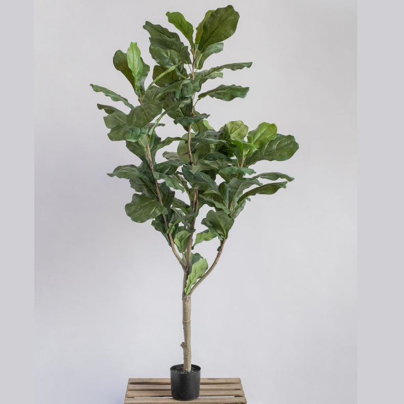 5' Fiddle Leaf - Artificial Plant
