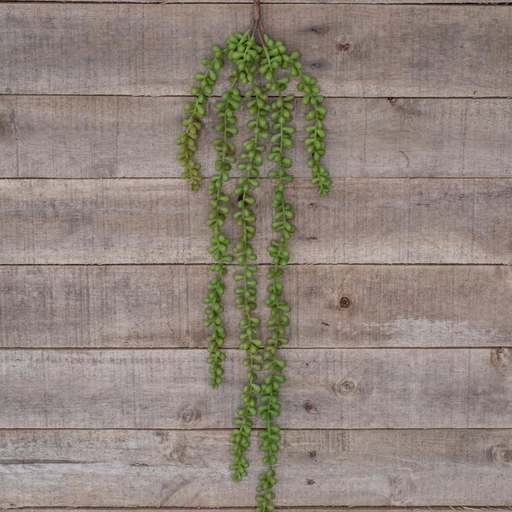 String of Pearls - 71cm - Artificial Plant
