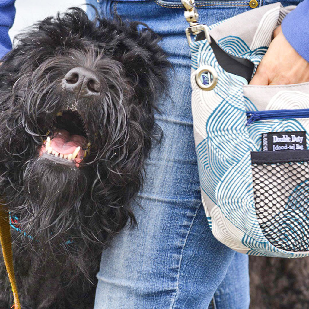 Double Duty Dog Walking Bags