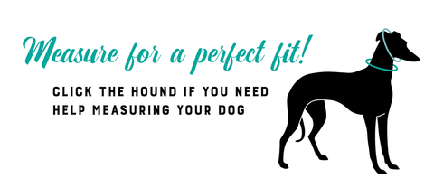 How to measure for a Classic Hound collar