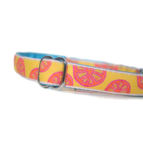 "5/8"" Pink Lemonade Martingale"