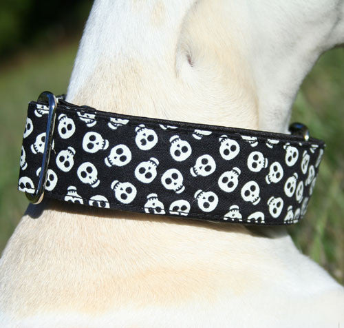 Glowing Skullz Martingale Collar