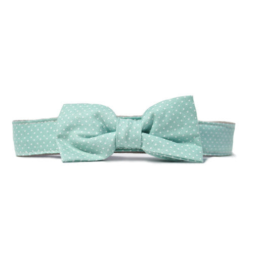 Collar Bow Tie Set - Pin Dot Seafoam