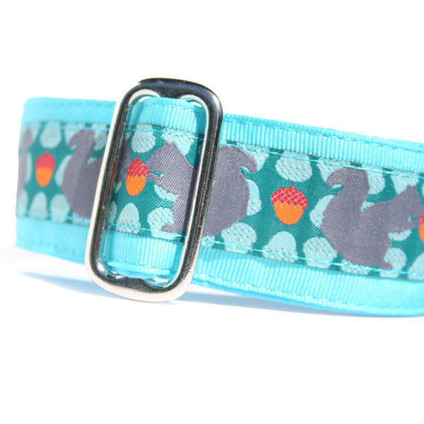 "1.5"" Squirrelly Martingale"