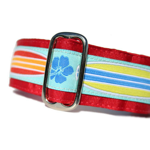 "1.5"" Surf's Up! Martingale"