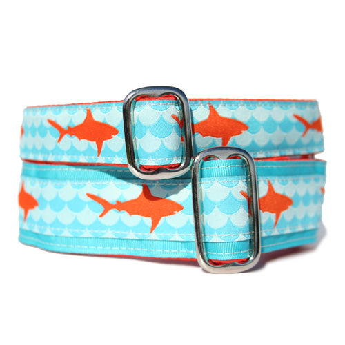 "1"" Sharks Buckle Collar"