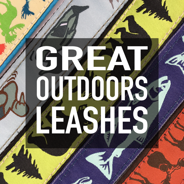 "1"" Great Outdoors Leashes"