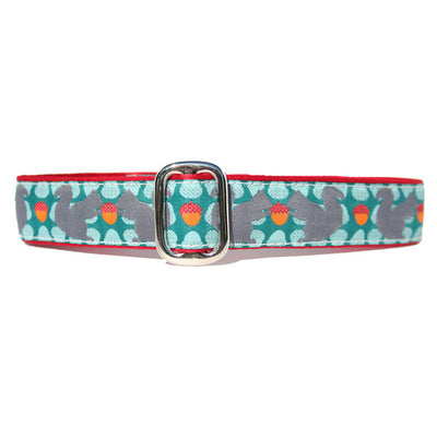 "1"" Satin-Lined Squirrelly Tag Collar"
