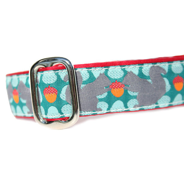 "1"" Squirrelly Tag Collar"