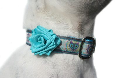 Collar Rose Sky Blue