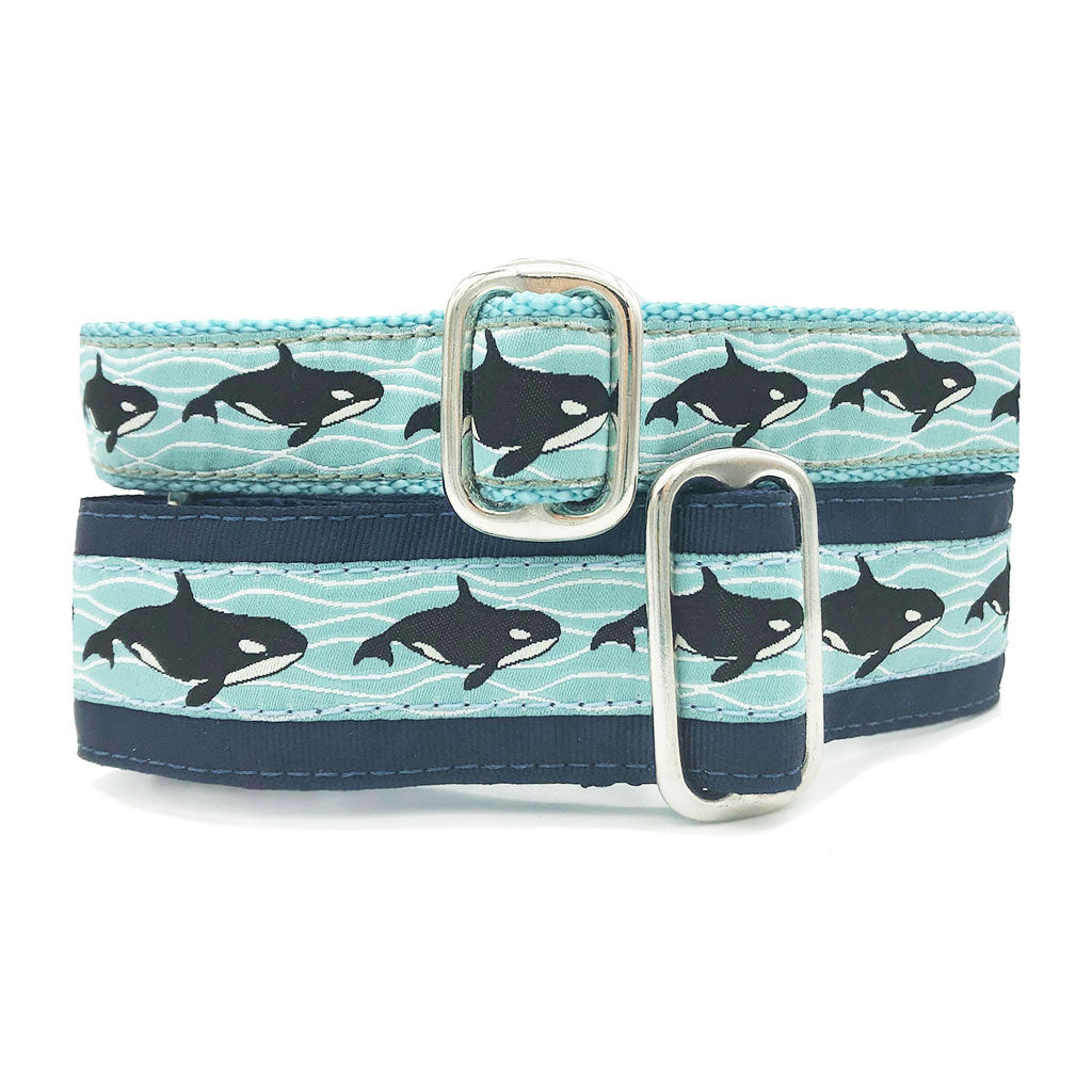 Orcas Buckle Collar