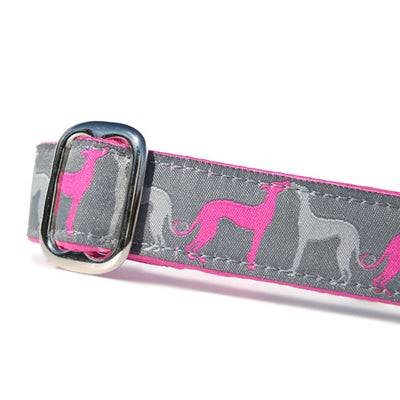 Pink and Grey Sighthounds over Grey Background Sighthound Love Dog Collar Slant