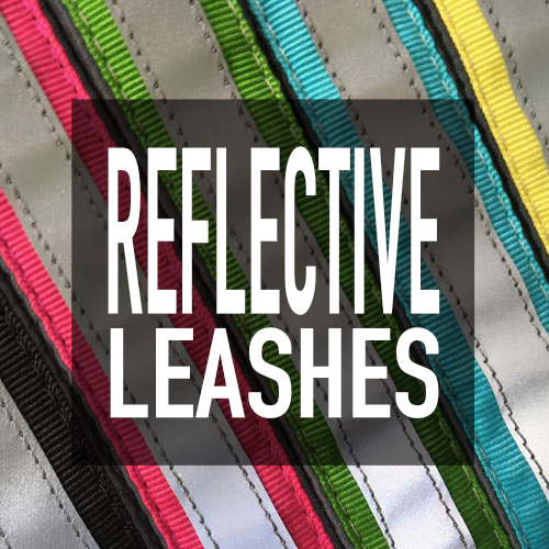 Reflective Leashes