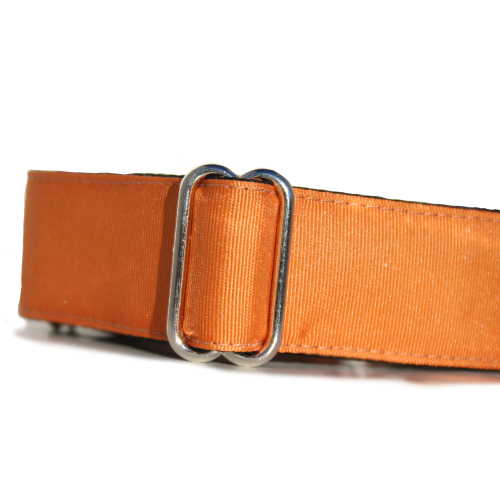 Spectrum Ginger Orange Buckle