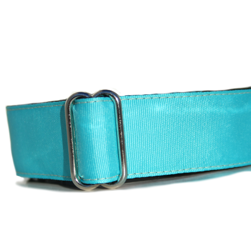 Spectrum Turquoise Blue ID Tag Collar