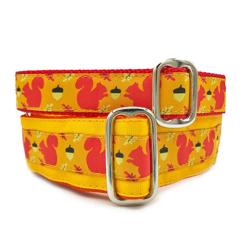 Unlined Squirrel Patrol Buckle or Martingale