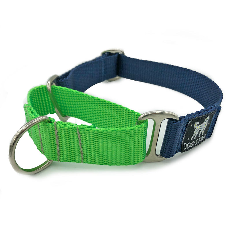 "1"" Blue and Green Nylon Webbing Martingale Dog Collar"