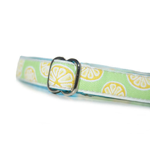 "5/8"" Citrus Tag Collar"