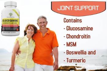 Glucosamine Chondroitin Turmeric MSM Boswellia - Joint Pain Relief Supplement 90 Capsules