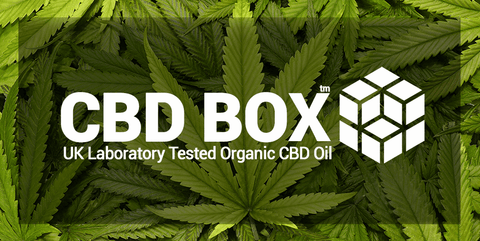 The CBD Box - GREEN BG LOGO
