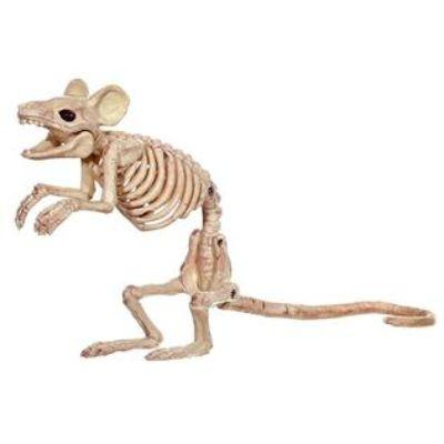 Skeleton Mouse Prop 8