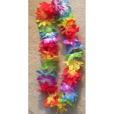 Tropical Two Tone Rainbow Lei