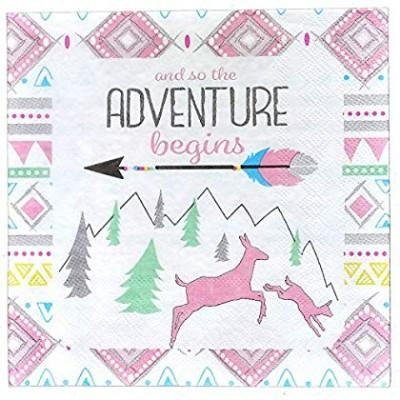 Adventure Pink Luncheon Napkin - 16 Pack