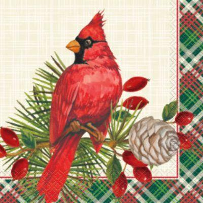 Red Cardinal Luncheon Napkin - 16 Pack