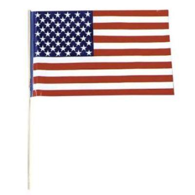 USA Flag Plastic 12