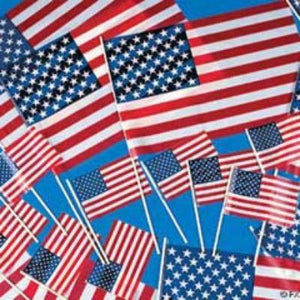 "USA 4"" x  6"" Flag 12 Pack"