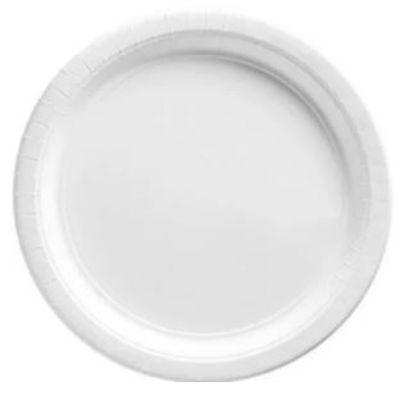 Frosty White Paper Dinner Plates 9