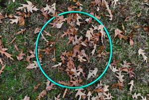 Translucent Taped Hoop