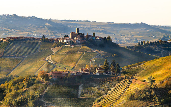 Why now is the time to buy Piedmont wine