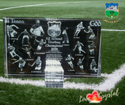 New Tipperary Action 15 Plaque